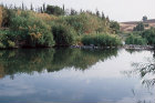 Israel, the River Jordan south of Galilee