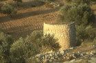 Watch tower in the early morning light, below Bethlehem, Israel