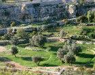 Israel, Jerusalem, the Hinnom Valley, olive trees