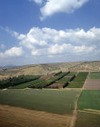 Israel, aerial view of cultivated fields in the Jezreel Valley looking east with Mount Tabor in the distance
