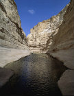 Israel, Advat, Wadi Zin, lower pools