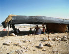 Israel, Bedouin encampment south of Jericho near Herods winter palace