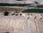 Israel Herod