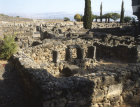 More images from Capernaum