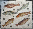 Fish, three species, two of each, third century National Roman Museum, Palazzo Massimo, Rome, Italy