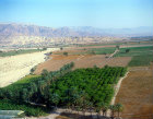 Farmland, aerial photograph, Ghor al-Safi, Jordan, lowest land on earth