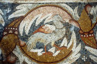 Bird, mosaic in Church of Holy Apostles, Madaba, Jordan