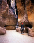 Jordan Petra bedouin riding a donkey through the Siq