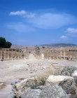 The forum, Jerash, Jordan