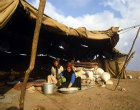 Bedouin woman making bread, Jordan