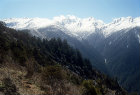 More images from Langtang