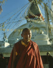 Tibetan Buddhist priest in front of Tibetan Buddhist shrine, Boudhanath, Nepal