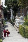 Two Tibetan Buddhist monks, Kopan Monastery, Kathmandu, Nepal