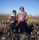 Bedouin children picking cotton in September at al-Hardaneh, Euphrates Valley, Syria