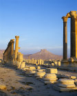 Syria, Palmyra, sunrise over the ruins, a Roman colonnaded street and 16th century Arab Castle