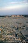 Ruins at sunrise, Palmyra, Syria