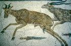 Hartebeeste and antelope, third century, Roman mosaic, Sousse Museum, Sousse, Tunisia