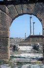 Columns of the Temple of Baal, Thuburbo Majus, Tunisia