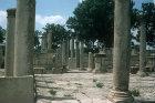 Basilica of Scola Juvenus, Maktar (ancient Mactaris) Tunisia