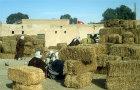 The straw market, Douz, Tunisia