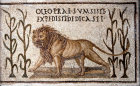 Lion, Bardo Museum, Tunis, Tunisia