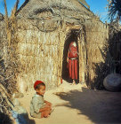 Berber children in bamboo dwelling, Island of Djerba, Tunisia