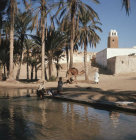 More images from Gafsa