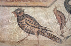 Pheasant, detail from fifth century floor mosaic in the Great Church, Mopsuestia (Misis), Cilicia, Turkey