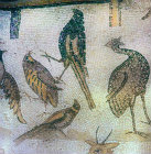 Four birds, detail from fifth century floor mosaic in great church at Mopsuestia (Misis), Cilicia, Turkey