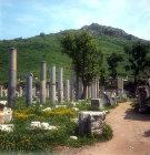 Commercial Agora looking towards Mount Pion, Ephesus, Turkey