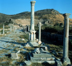 Turkey Ephesus the Arcadian Way and columns