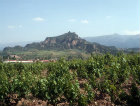 Acropolis of Sardis, capital of Lydian Empire, seen across the vineyards, Turkey