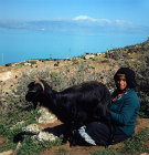 Turkey Lake Egirdir, formerly Lake Egridir,  Pisidia, nomad woman milking goat