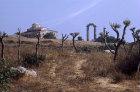 Sacred Way, leading from Miletus to Didyma,  Didyma. Turkey