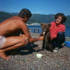 Turkey, Marmaris, young bear eating ice cream on a beach