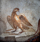 Eagle, third century mosaic, detail from Orpheus charming the beasts, from Tarsus, Archaeological Museum, Antioch, Turkey