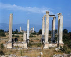 Columns of east propylaeum, monumental gateway, Aphrodisias, ancient region of Phrygia, Turkey