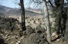 Houses, Hadda, near Sana