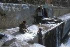 Ablutions and sorting qat, Hadda, near Sana
